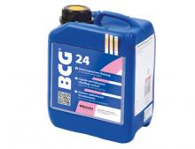 BCG 24